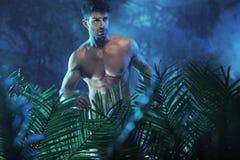 年轻裸体模特儿的画象在密林 免版税库存图片