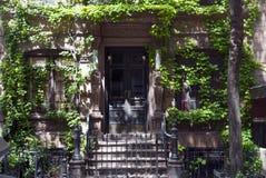 褐砂石纽约 库存图片