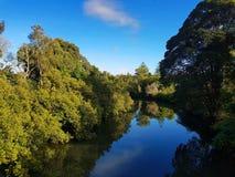 褐色小河, Taree,澳大利亚 免版税库存照片