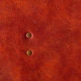褐色接近的皮革铆钉纹理 库存照片