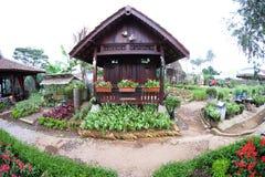褐色的美丽的传统房子与两只白色鸠,在可爱的花园的辅助部件 免版税图库摄影