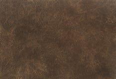 黑褐色皮革纹理背景 关闭古老皮革纹理 皮革纹理褐色背景样式 免版税库存图片