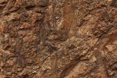 黑褐色石头 库存图片