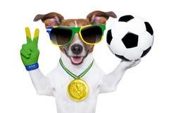 巴西世界杯足球赛狗 库存图片