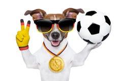 巴西世界杯足球赛狗 免版税库存图片