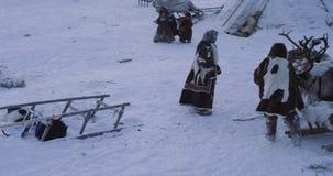 西伯利亚人民令人惊讶的录影yurts阵营的,男人和妇女有一典型的天在寒带草原,有驯鹿的和 股票录像