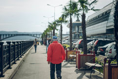 西伯利亚人迈阿密 免版税图库摄影