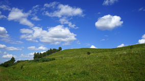 西伯利亚干草原在夏天 免版税图库摄影