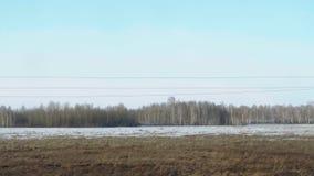 西伯利亚春天风景 股票录像