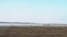 西伯利亚春天风景 股票视频