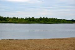 西伯利亚的北部的风景有河的 免版税库存图片