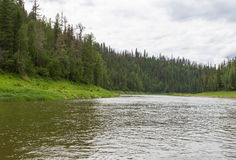 西伯利亚的小河 克拉斯诺亚尔斯克地区,俄罗斯 库存照片