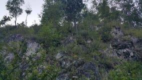西伯利亚的山 库存照片