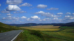 西伯利亚的干草原风景 库存图片