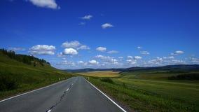 西伯利亚的干草原风景 库存照片