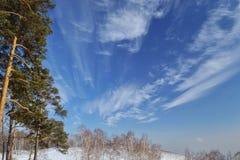 西伯利亚蓝天 库存照片