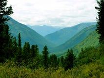 西伯利亚 库存图片