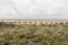 西兰省` s海滩 库存图片