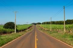 巴西农村路 免版税库存图片