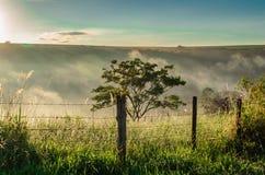 巴西农村风景 免版税图库摄影