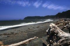 西北部海岸太平洋 免版税库存图片