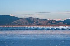 西北阿根廷-盐沼Grandes沙漠风景 免版税库存照片