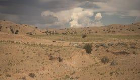 西南沙漠 库存照片
