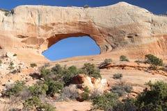 西南犹他自然石曲拱 免版税图库摄影