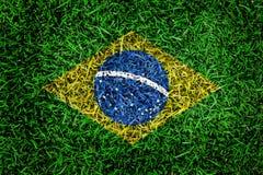 巴西在绿草的旗子纹理在背景的庭院里 库存照片