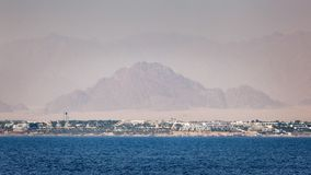 西奈半岛风景 免版税库存照片