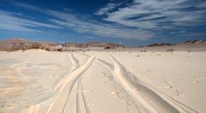 西奈沙漠 免版税库存照片