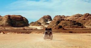 西奈沙漠 库存照片