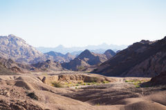 西奈沙漠 免版税图库摄影
