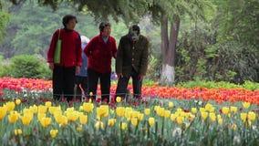 西安中国4月15日2012年:人们喜欢漫步通过公园和敬佩花 股票录像