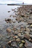 西方加拿大的海岸 免版税图库摄影