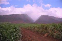 西方毛伊的山 库存图片