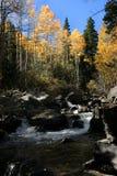 西方清楚的小河秋天叉子枪响的急流 图库摄影
