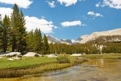 西方面对惠特尼山脉 免版税库存图片