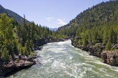 西方kootenai蒙大拿北部的河 免版税库存图片