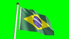 巴西旗子 库存例证