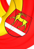 西格马林根克瑞斯,德国旗子  库存图片