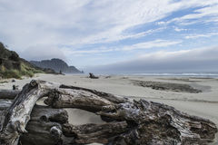 西海岸、海滩、海和天际 免版税库存图片
