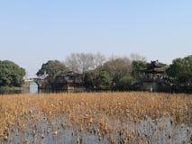 西湖冬天风景 图库摄影
