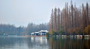 西湖冬天 免版税库存照片