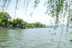 西湖的秀丽在杭州 库存照片