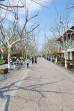 西湖的,杭州03公园 库存图片