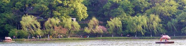 西湖bai堤道春天杨柳绿色、桃子红色和吸引力 图库摄影