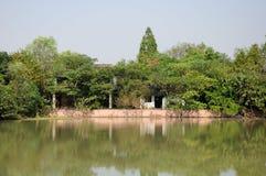 西溪沼泽地杭州 库存照片