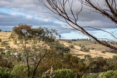 西澳州国家 免版税库存图片