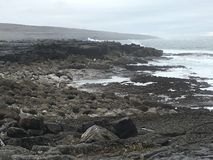西爱尔兰 免版税库存照片